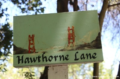2. Lower Hawthorne (top) - small
